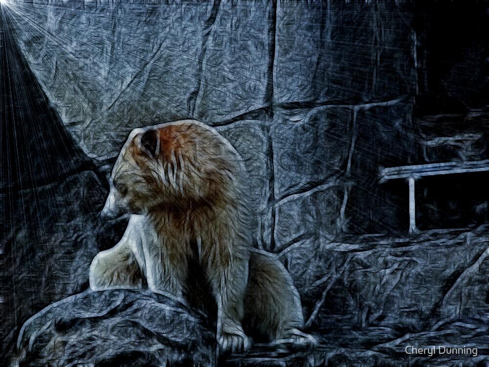 shy bear by Cheryl Dunning