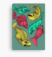 Color Fish Canvas Print