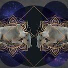 « Inde cosmologique I  » par Alizée Laurence