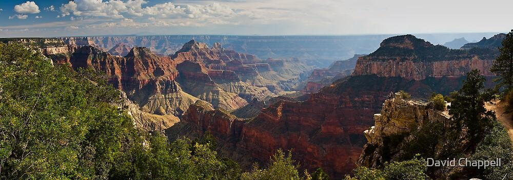Grand Canyon North Rim Panorama by David Chappell