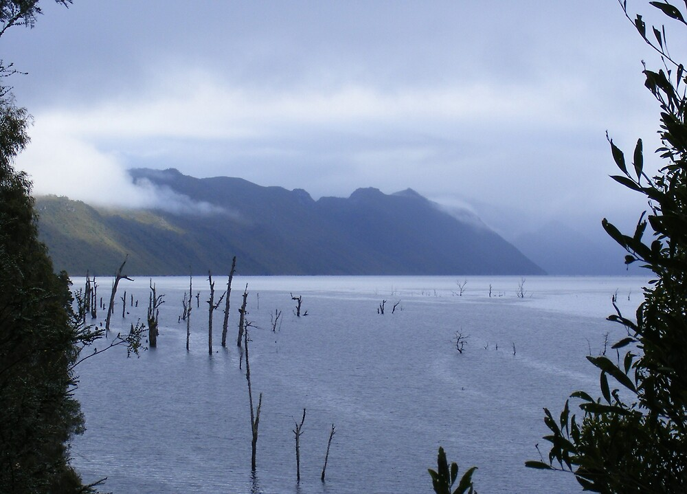 early misty morning today at Lake Mackintosh, Tullah, Tasmania by gaylene
