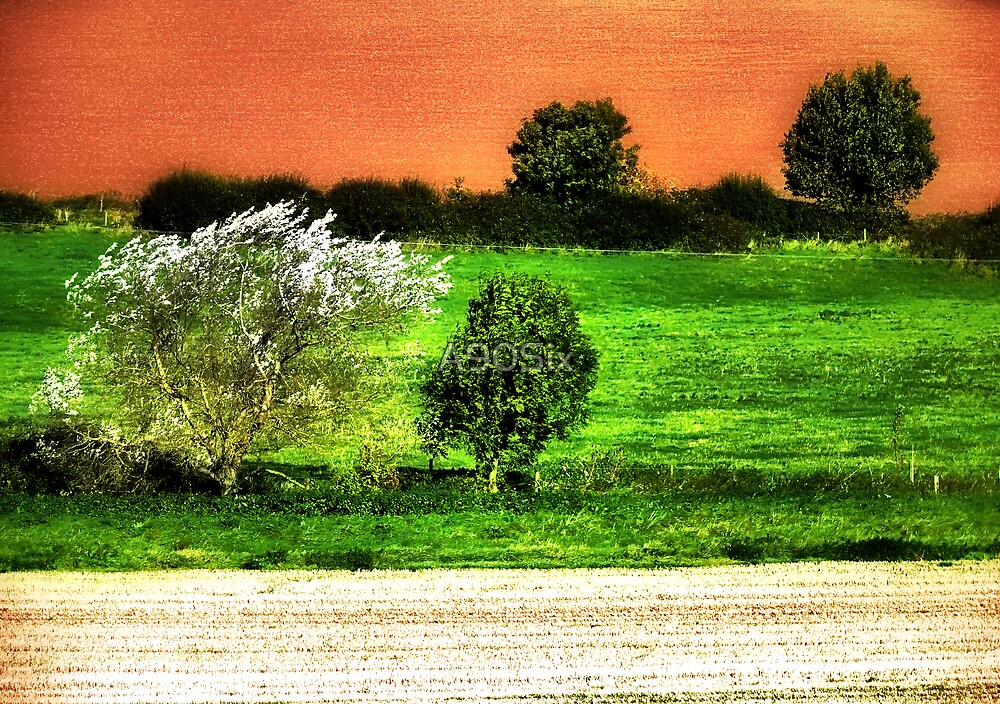 One Green Field by A90Six