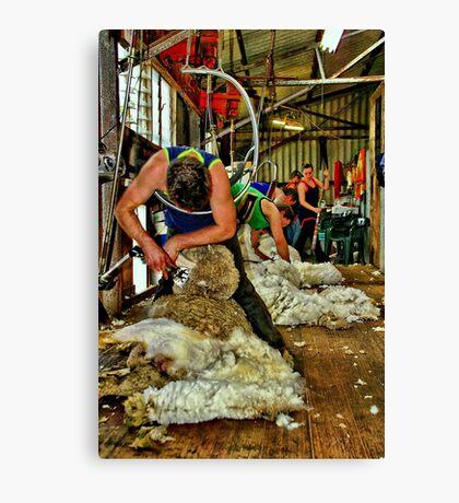 """Click Go The Shears"" Canvas Print"