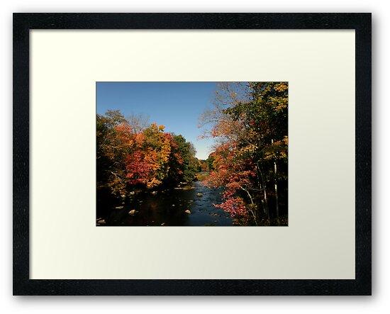 New Hampshire Foliage 2008 #6 by Len Bomba