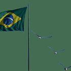 Winds of Brazil  - green by delcueto