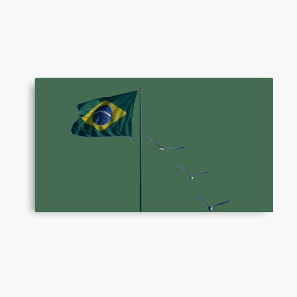 Winds of Brazil  - green Canvas Print