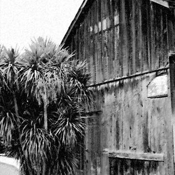 Old Sonoma barn by jherbert101