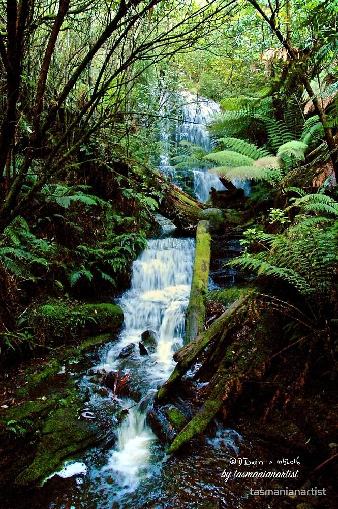 SCENES & SCENERY ~ Stream Beside Myrtle Gully Track 2 by tasmanianartist by tasmanianartist
