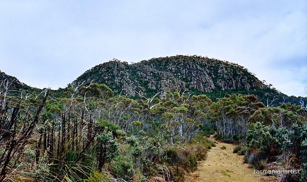 SCENES & SCENERY ~ Meet Tom Thumb by tasmanianartist by tasmanianartist