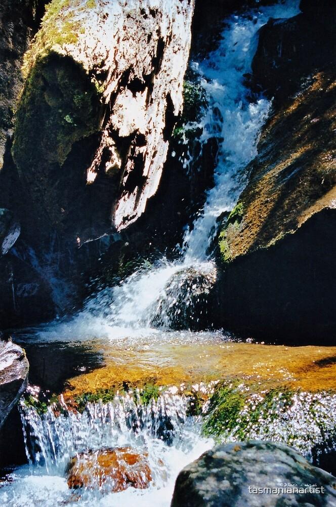 SCENES & SCENERY ~ St Crispins Well 3 by tasmanianartist by tasmanianartist