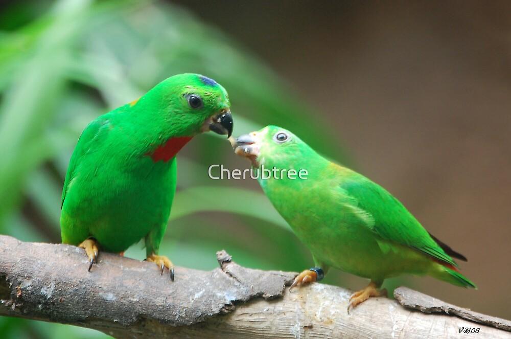 Sharing by Cherubtree