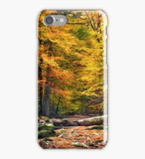 Carpathian  forest iPhone Case/Skin
