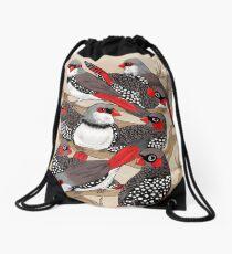 Firetails Drawstring Bag