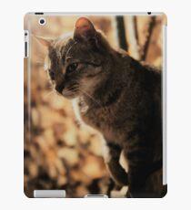 Mia the cat VII iPad-Hülle & Skin