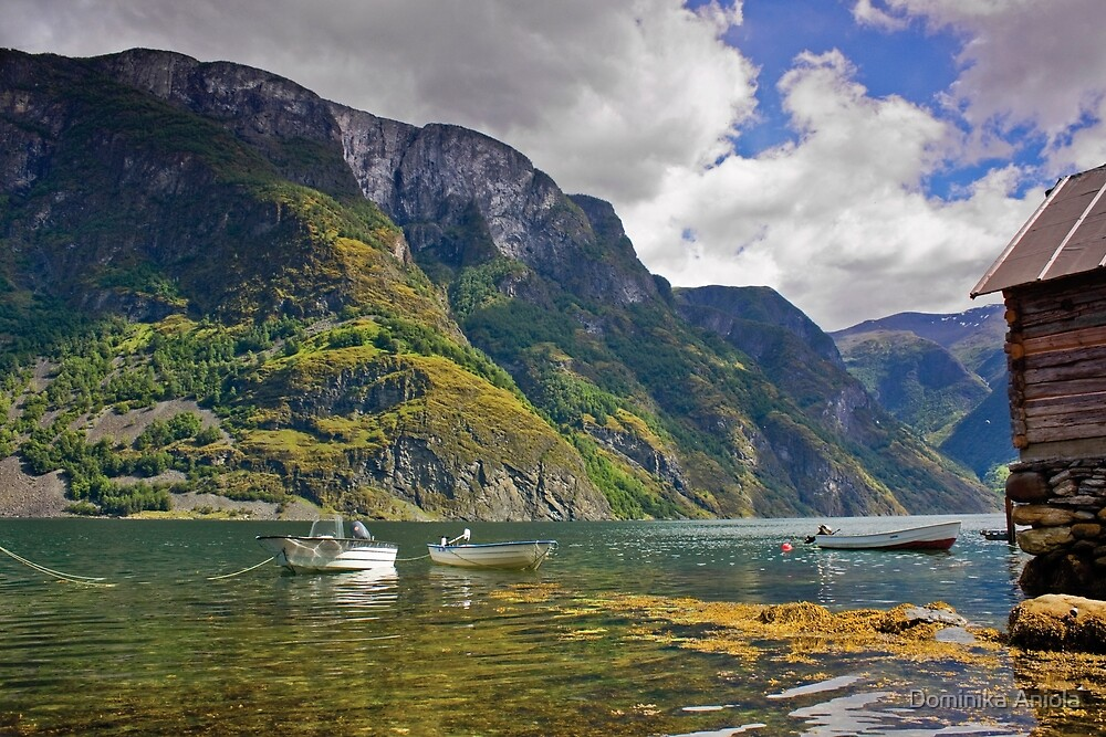 Clear water of fjords by Dominika Aniola