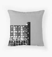 Facing the North-Grey  Throw Pillow