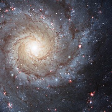 Spiral Galaxy M47 by kipstewart