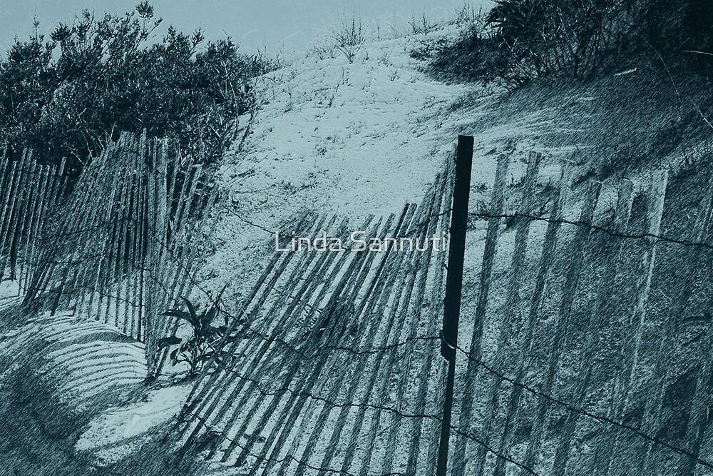 Snowy Beach by Linda Sannuti