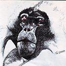 Gelada Sketch by DreddArt