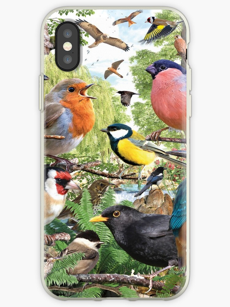 British Birds by David Penfound