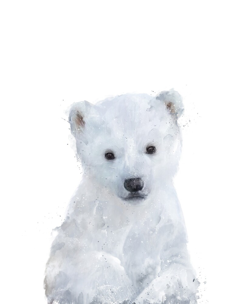 Little Polar Bear by Amy Hamilton