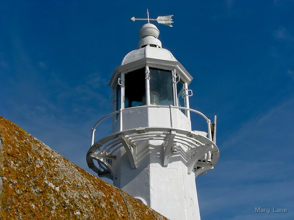 Mevagissey Lighthouse by Mary  Lane
