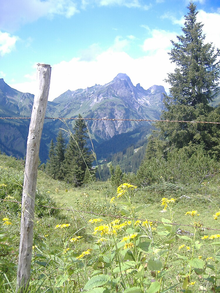 Austria 08 by Seija