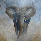 Elephant 2 by elinjohnsen