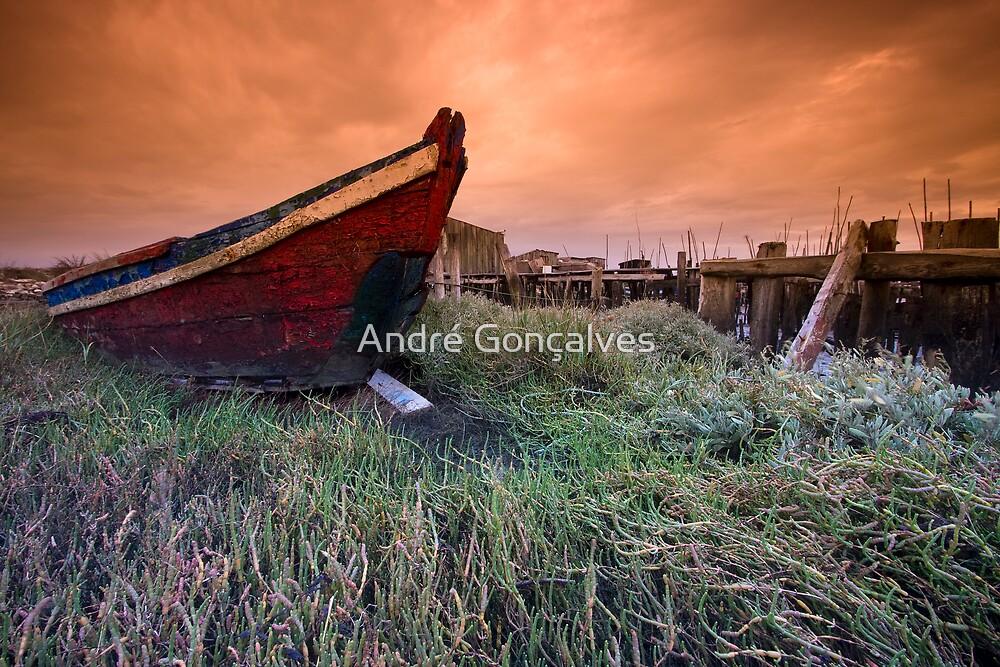 Old Boat by André Gonçalves