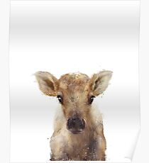 Little Reindeer Poster