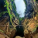 Way down in the hole by Hercules Milas