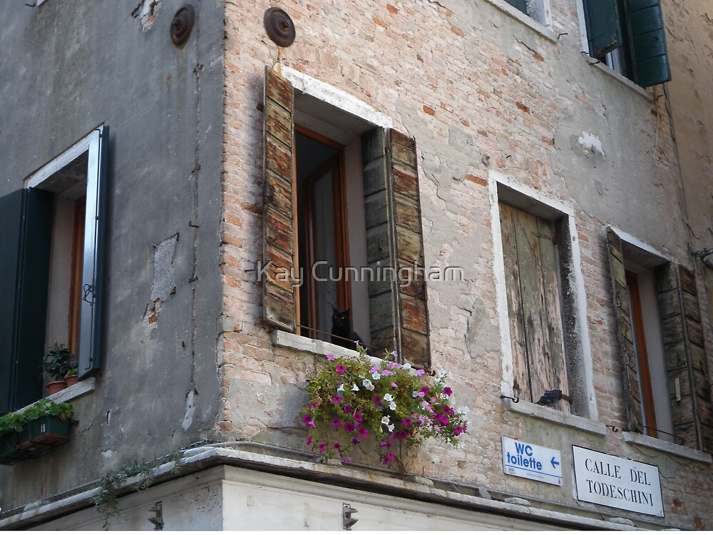 Windows and Textures of Venice! by Kay Cunningham