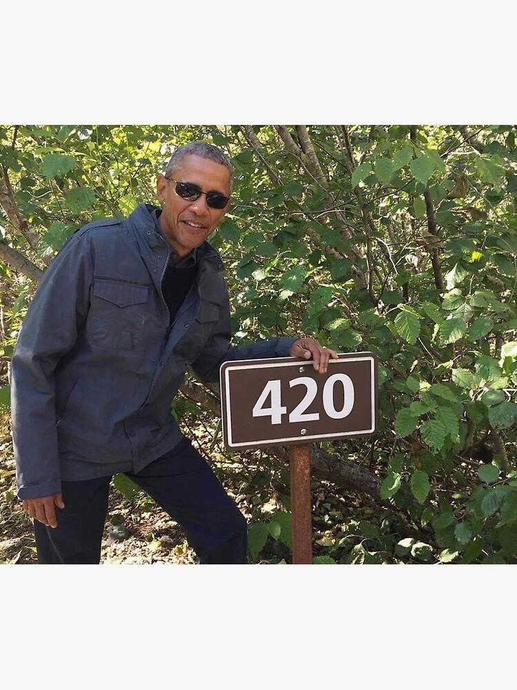 420 Obama Print by budgetnudest