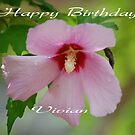 Happy Birthday Vivian (vigor) by zpawpaw