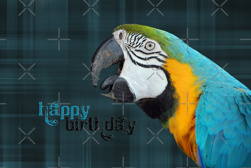 Parrot On Plaid by Maria Dryfhout