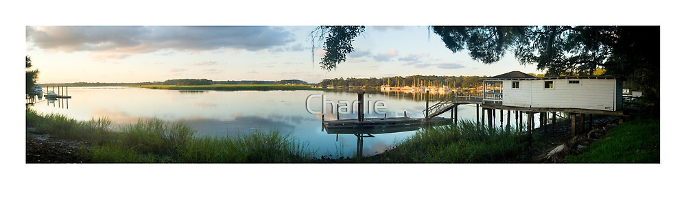 Skidaway River from The Bluff by Charlie