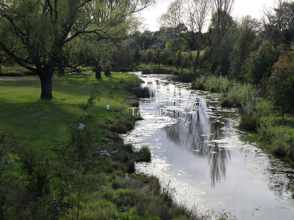 Werribee River Ballan by TracyD