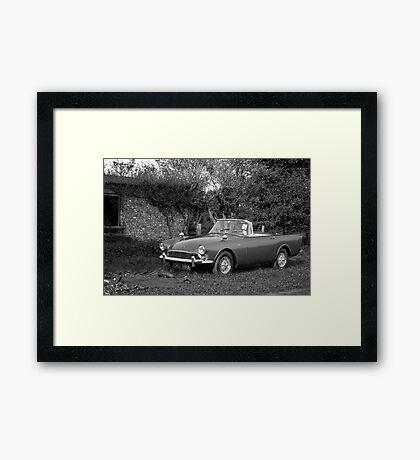 Sunbeam Alpine Framed Print