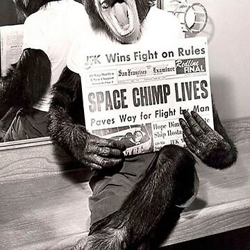 Space chimp by acifuentes