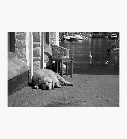 fisherman's friend Photographic Print