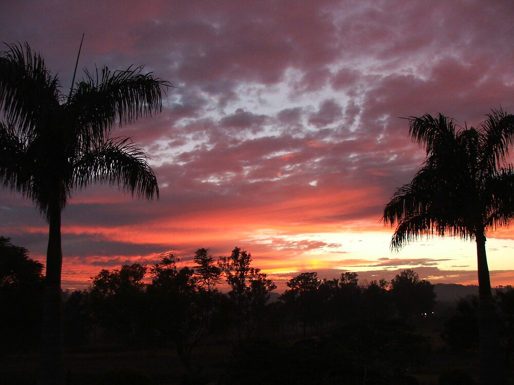 Red Sunrise by Cherie Carlson