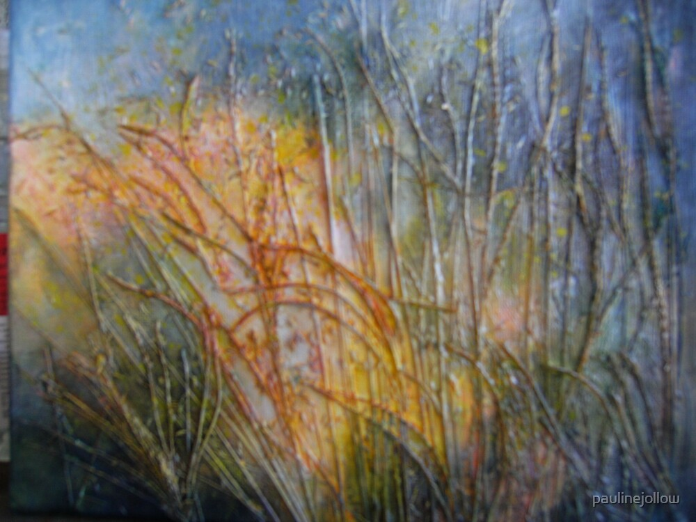Grass Inspiration IV by paulinejollow