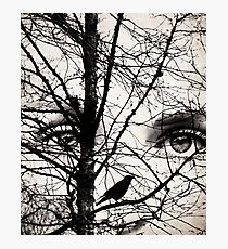 The eyes of the raven Photographic Print