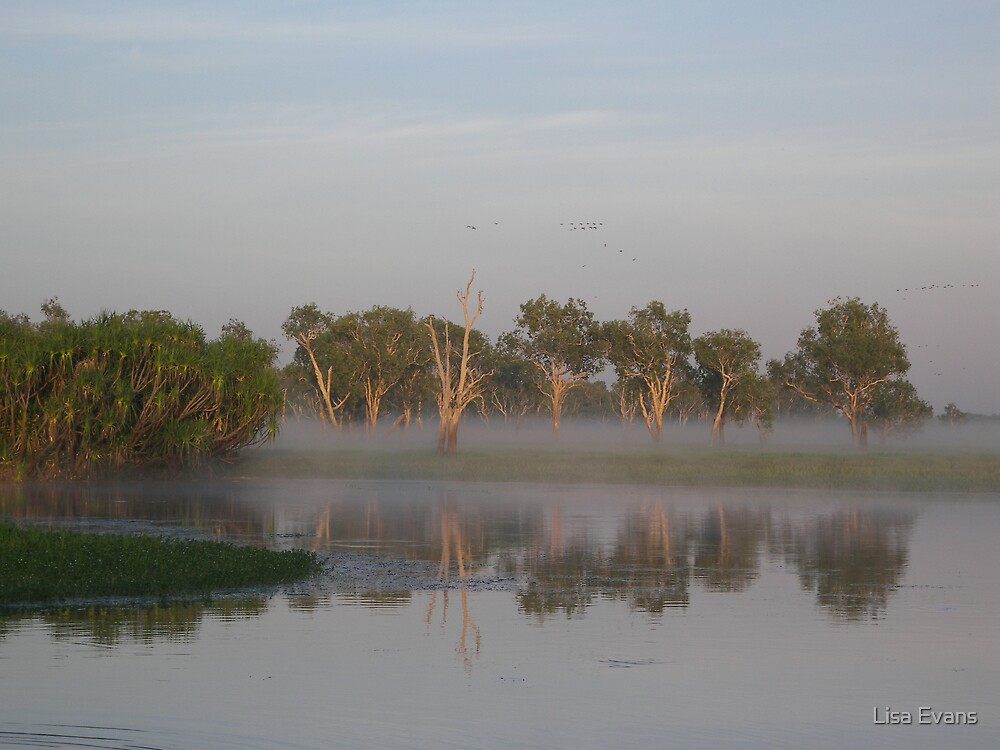 Yellow Water Billabong - Kakadu National Park by Lisa Evans