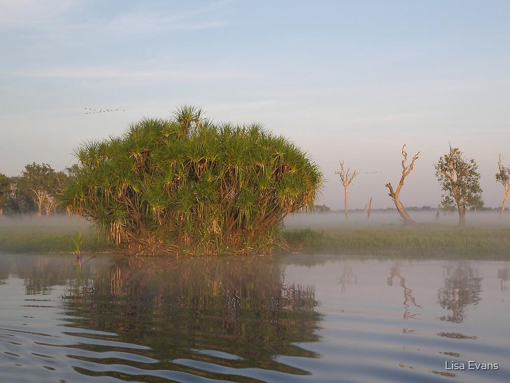 Yellow Waters Billabong - Kakadu National Park by Lisa Evans