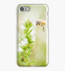 Winter savory and bee in garden iPhone Case/Skin
