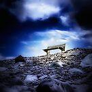 Lonely at the top by Kurt  Tutschek