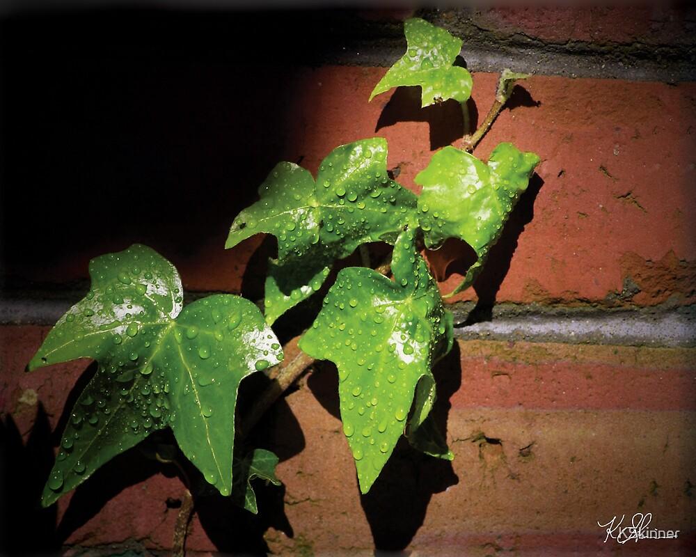 Reaching Ivy by KSkinner