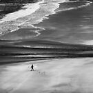 The Surfer by dfm63