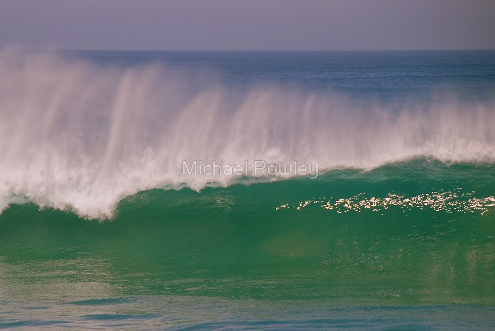 Rip Curl by Michael Rowley